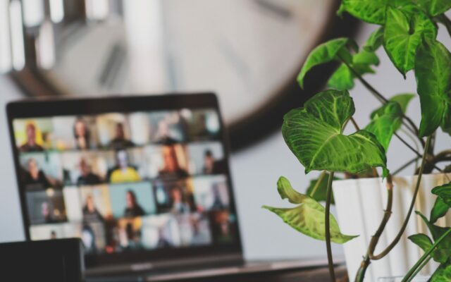 Ein aufgeklappter Laptop mit verschwommenen Bild einer Videokonferenz mit mehreren Teilnehmern, davor ein Blumentopf mit einer Grünpflanze